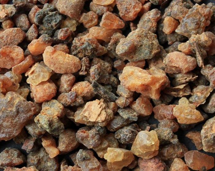 Myrrh (Commiphora myrrha)