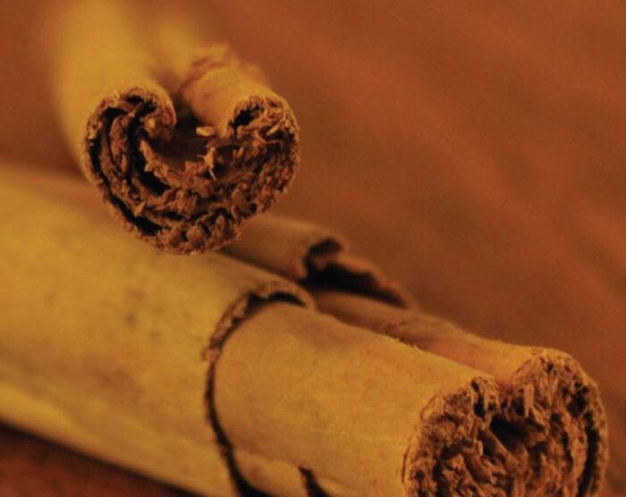 Cinnamon Bark (Cinnamomum verum)